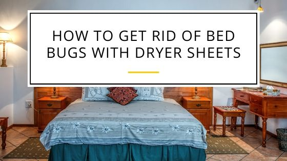 Easy Guide on How to Get Rid of Bed Bugs with Dryer Sheets